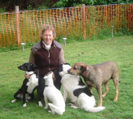 Isobel and Dogs